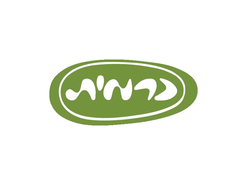 כרמית לוגו סטודיו זאתי